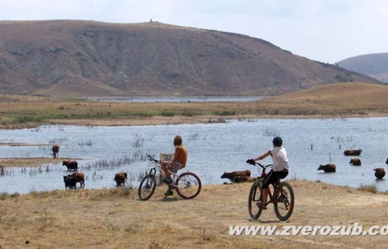 Отдых в Крыму. Архадерессе винодельческое хозяйство